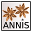 annis_icon.png