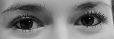 Augen Isabelle